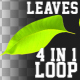 Leaves Transition Pack 4 in 1
