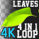 4K Leaves Transition Pack 4 in 1 - VideoHive Item for Sale