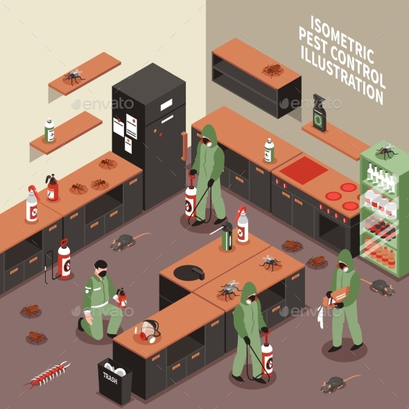 GraphicRiver Pest Control Isometric Illustration 20502351
