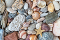 Shells, starfish and pebble stones - PhotoDune Item for Sale