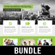 4 Corporate Business Flyer Templates Bundle V4
