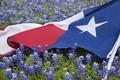 Texas Flag in Field of Bluebonnets