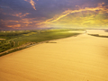 Late Afternoon Sunset Above Agricultural Wheat Fields - PhotoDune Item for Sale