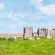 Sheep Grazing Near Bamburgh Castle - PhotoDune Item for Sale