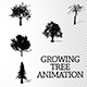 Growing Tree Silhouette Pack - VideoHive Item for Sale
