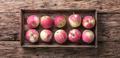 Autumn red apples - PhotoDune Item for Sale