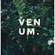 Venum Creative Powerpoint Template