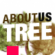 About Us Bonsai Tree - VideoHive Item for Sale