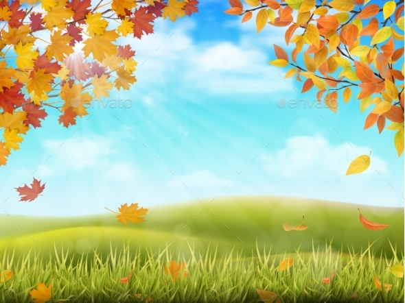 GraphicRiver Autumn Rural Landscape with Tree Branches 20517004