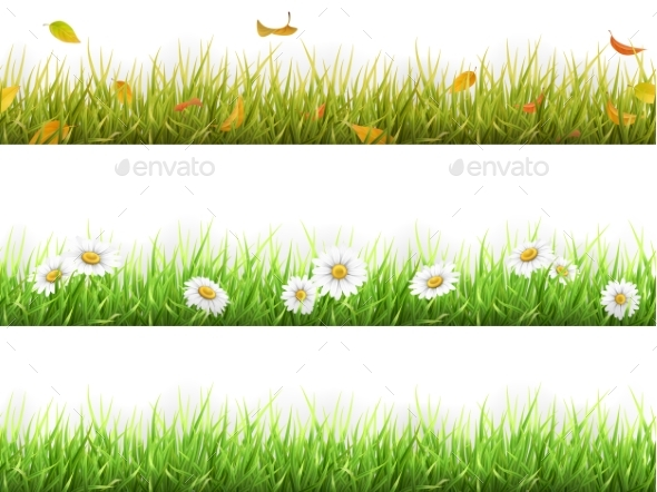 Grass in Different Seasons Set - Flowers & Plants Nature