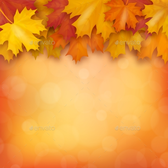 GraphicRiver Autumn Maple Leaves on Blurry Background 20517024