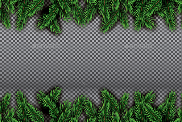 Fir Branch on Transparent Background - Christmas Seasons/Holidays