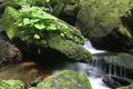 Boulders in the flowing water - PhotoDune Item for Sale