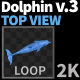 Dolphin 3 - VideoHive Item for Sale