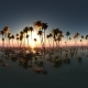 Aerial VR 360 Panorama of Tropical Island at Sunset