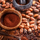 Organic cocoa beans - PhotoDune Item for Sale