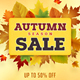Autumn Fall Sale Banners Set