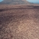 Volcanic Valley Near Timanfaya National Park, Lanzarote. - VideoHive Item for Sale