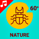 Nature Insect Animal Bug Leaf Animation - Line Icons and Elements - VideoHive Item for Sale