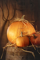 Rustic scene with pumpkins and pitch fork - PhotoDune Item for Sale
