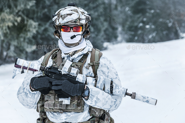 Winter arctic warfare - Stock Photo - Images