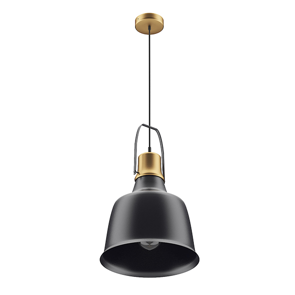 Black and Gold Ceiling Lamp - 3DOcean Item for Sale