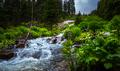 Colorado Landscape water cascade near Isabella lake trail