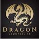 The Dragon Logo