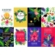 Exotic Tropical Colorful Banners Collection