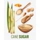 Cane Sugar Transparent Set