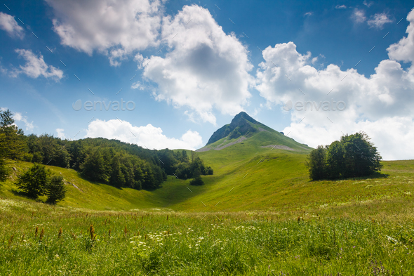 Mountain valley - Stock Photo - Images