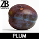 Plum 002 - 3DOcean Item for Sale