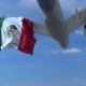 Commercial Airplane Landing Behind Waving Mexican Flag
