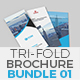 Trifold Brochure Bundle Set 01