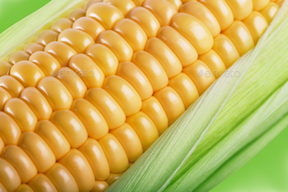 Fragment of a cob of ripe corn in leaves - Stock Photo - Images