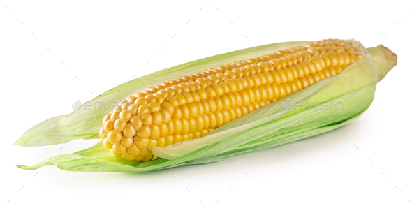 Ripe corn in leaves - Stock Photo - Images