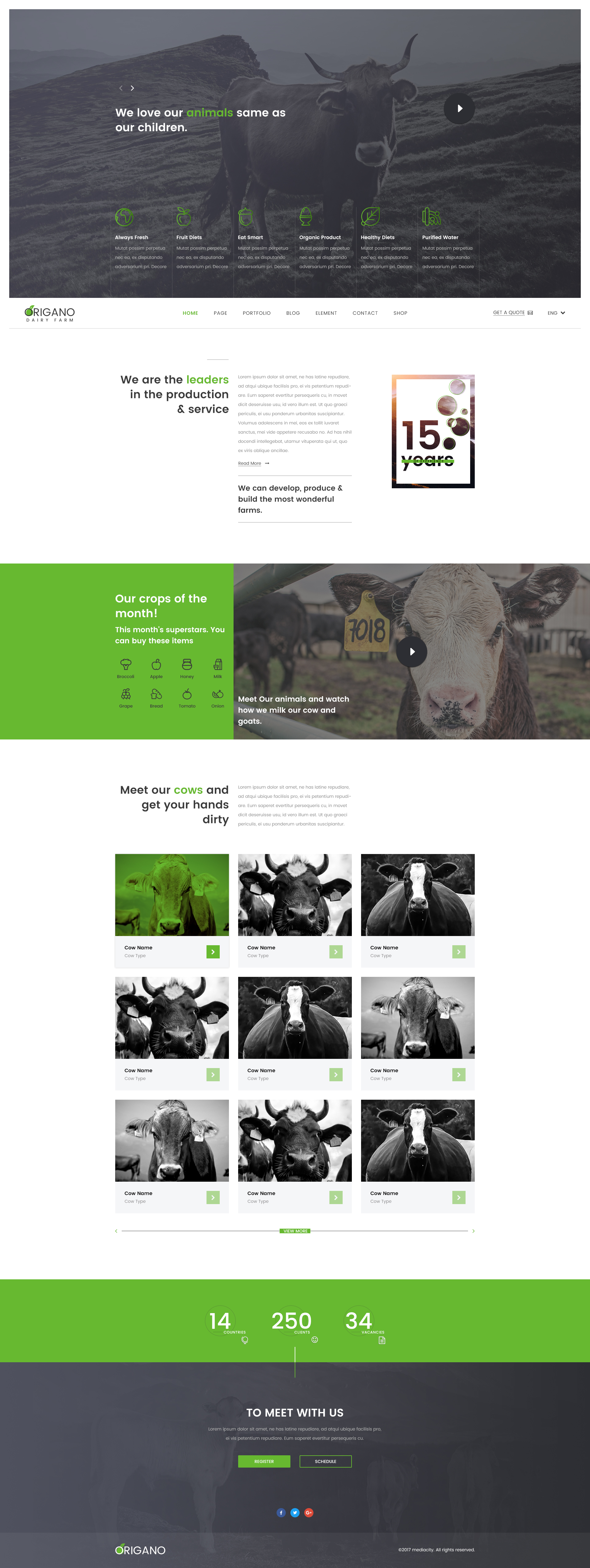 Origano - Organic Store HTML Template by media-city | ThemeForest