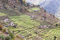 Terraced plantation on hill slopes in Nepal
