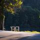 Beautiful Morning Light at Bled Lake National Park Slovenia - PhotoDune Item for Sale