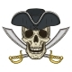 Single Cartoon Pirate Skull in Hat