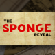 The Sponge Reveal - VideoHive Item for Sale