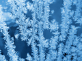 Ice pattern on winter glass - PhotoDune Item for Sale