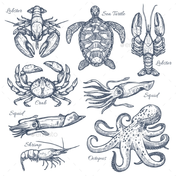 GraphicRiver Sea Animals and Seafood Isolated Sketch Set 20547028