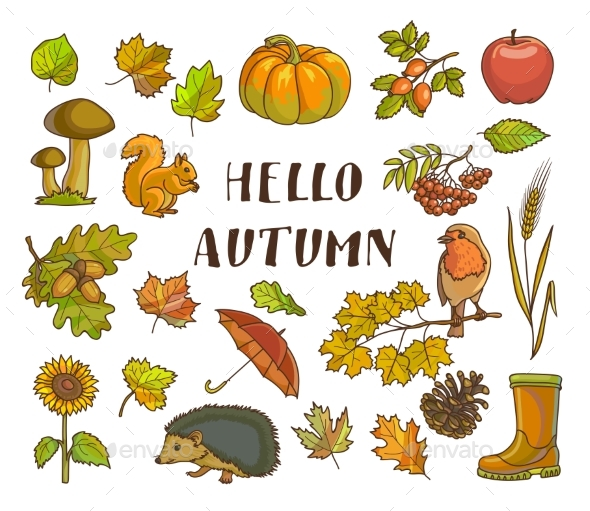 Hello Autumn Poster with Isolated Thematic - Flowers & Plants Nature