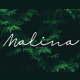 Malina | Script Font - GraphicRiver Item for Sale