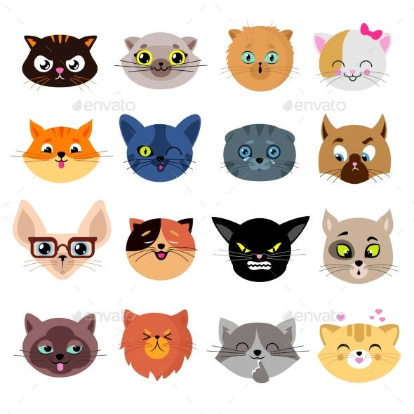 Heads of Cat Characters - Animals Characters