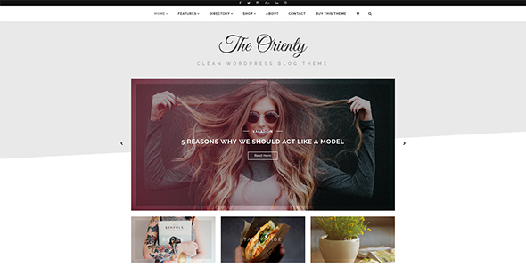 TheOrienty - A Skew Header Blog Theme