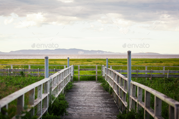 Amazing Calm Landscape View of a Swamp from a Wood Balcony - Stock Photo - Images