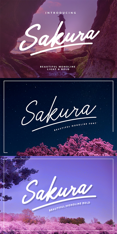GraphicRiver Sakura Family 20541827