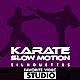 9 Karate Fighter Slow Motion Silhouettes - VideoHive Item for Sale